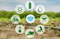IoT for agriculture
