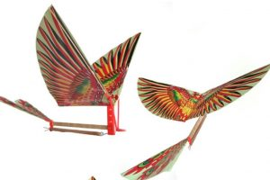 rubber powered ornithopter